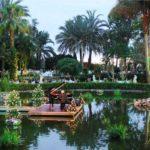 Hotel Botanico - Perfect Venue