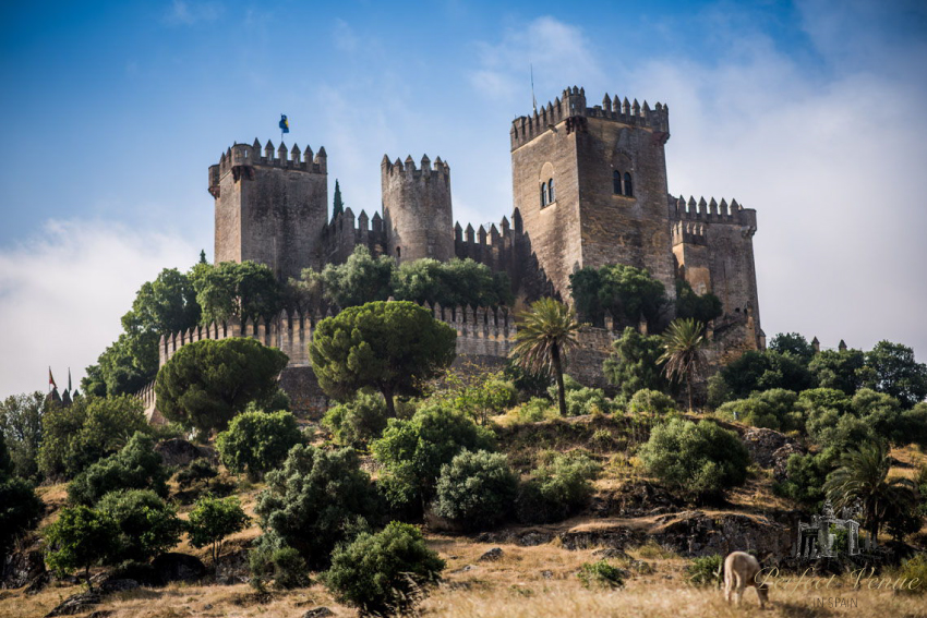 Almodovar Castle Venue For Weddings And Events