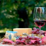 Wine, cheese and jamon tasting