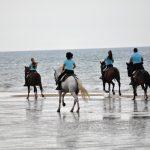 Horse riding route in Huelva