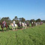 Horse riding route in Mallorca